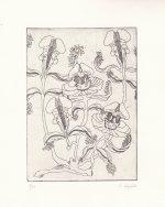 les abattoirs Exposition/Gravures - Fanny Bueb du 14 au 21 décembre 2013